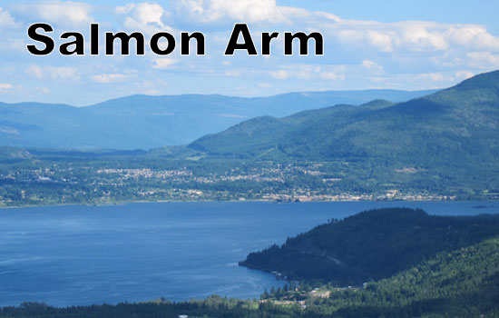 Salmon-Arm